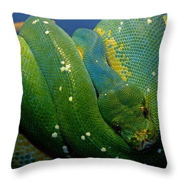 Emerald Trouble Throw Pillow