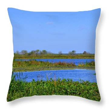 Emeralda Marsh IIi Throw Pillow by Jodi Terracina