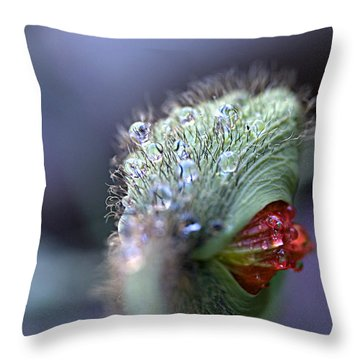 Throw Pillow featuring the photograph Emergence by Joe Schofield