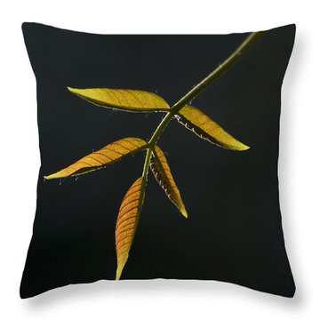 Throw Pillow featuring the photograph Emergence by Yulia Kazansky