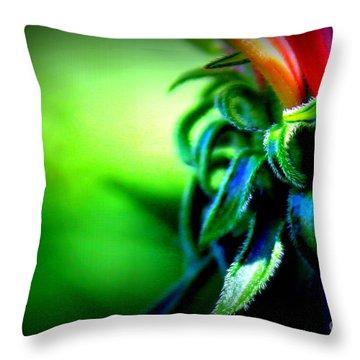 Emerging Coneflower Throw Pillow by Renee Croushore