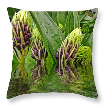 Emerging Throw Pillow by Debbie Portwood