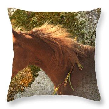 Emerging Free Throw Pillow