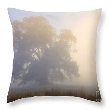 Emerging Throw Pillow by Mike  Dawson