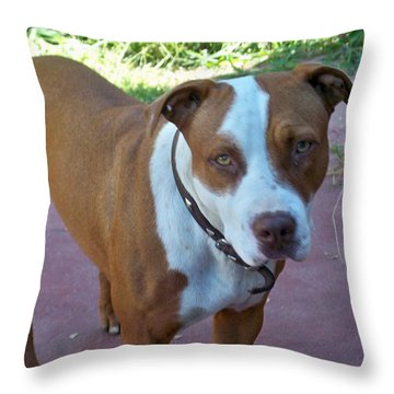 Emma The Pitbull Dog Throw Pillow