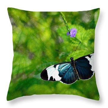 Emmanuale Throw Pillow by Floyd Menezes
