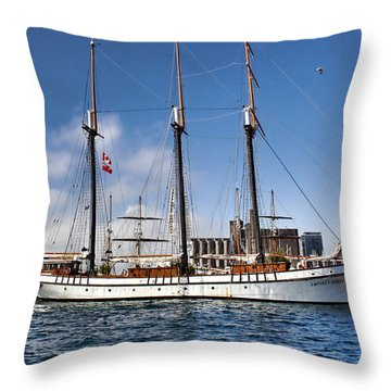 Empire Sandy Throw Pillow by Nicky Jameson
