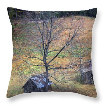 Throw Pillow featuring the photograph Empty Nest by Faith Williams