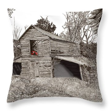 Empty Old Barn Throw Pillow by Jack Pumphrey