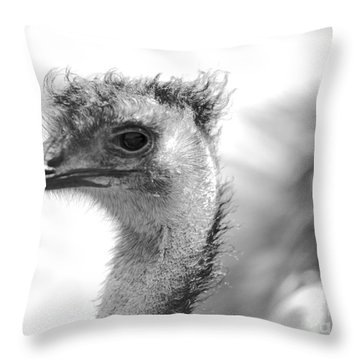 Emu - Black And White Throw Pillow by Carol Groenen