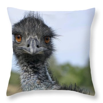 Emu Gaze Throw Pillow by Belinda Greb