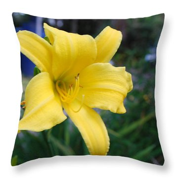 Encantador Throw Pillow