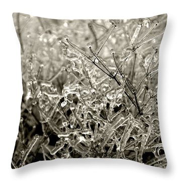 Encased In Ice IIi Throw Pillow