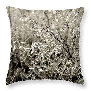 Encased In Ice IIi Throw Pillow