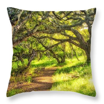 Enchanted Throw Pillow by Aron Kearney