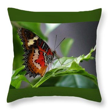 Enchanted Butterfly Throw Pillow by Bruce Bley