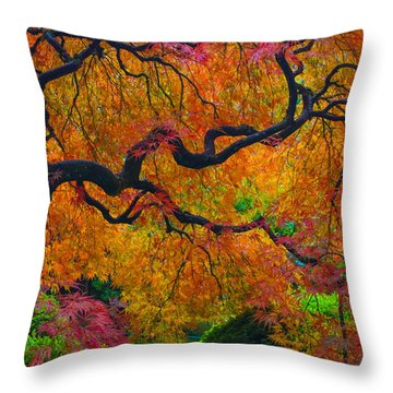 Enchanted Canopy Throw Pillow by Patricia Babbitt