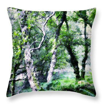 Enchanted Forest. The Kingdom Of Thetrees. Glendalough. Ireland Throw Pillow by Jenny Rainbow