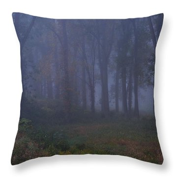 Enchanted Forest Two Throw Pillow