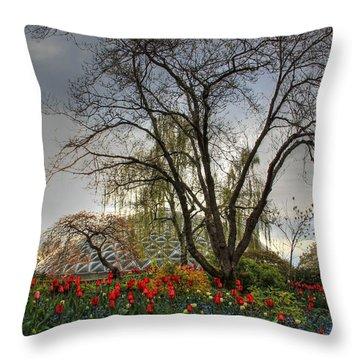 Throw Pillow featuring the photograph Enchanted Garden by Eti Reid
