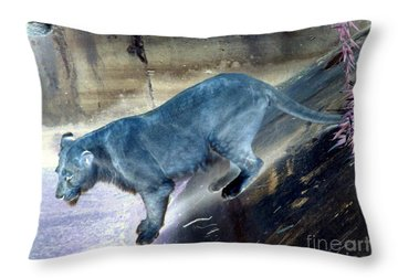Enchanted Lioness Throw Pillow by Joseph Baril