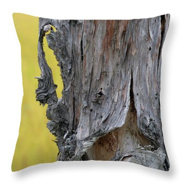 Throw Pillow featuring the painting Enchanted by Newel Hunter