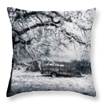Enchanted Pasture Throw Pillow