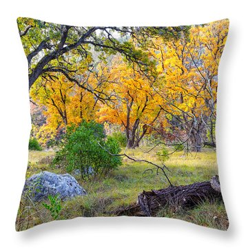 Enchanted Ruggedness Lost Maples State Natural Area - Texas Hill Country  Throw Pillow