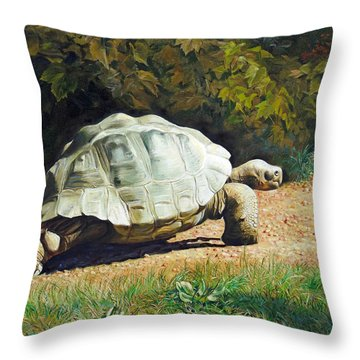 Enchanted Turtle's Terrific Journey Throw Pillow