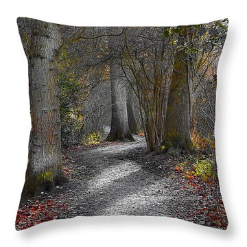 Enchanted Woods Throw Pillow by Linsey Williams