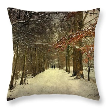 Enchanting Dutch Winter Landscape Throw Pillow