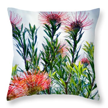 Enchanting Gardens 42 Throw Pillow