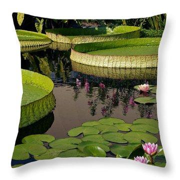 Enchanting Water Garden Throw Pillow by Byron Varvarigos