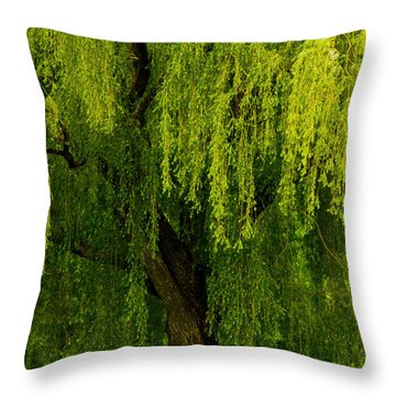 Enchanting Weeping Willow Tree  Throw Pillow by Carol F Austin