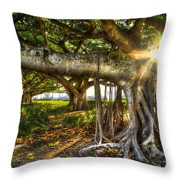 Enchantment Throw Pillow by Debra and Dave Vanderlaan