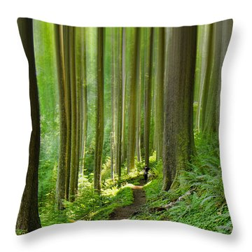 Enchantment Throw Pillow by Don Schwartz