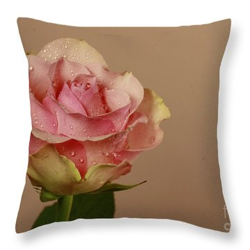 Enchantment Throw Pillow by Inspired Nature Photography Fine Art Photography