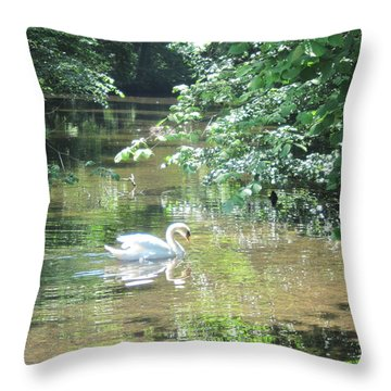 Throw Pillow featuring the photograph Enchantment by Pema Hou