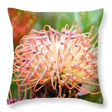 Throw Pillow featuring the photograph Encompassing Proteas by Mary Lou Chmura