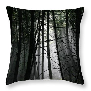 Encounter Of The Vermont Kind No.2 Throw Pillow by Neal Eslinger