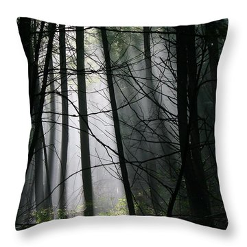 Encounters Of The Vermont Kind  Throw Pillow by Neal Eslinger