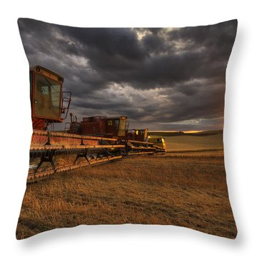 End Of Day Throw Pillow