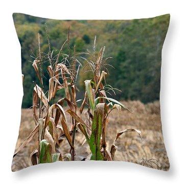 End Of Season Throw Pillow