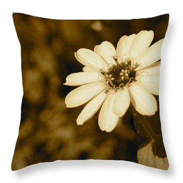 Throw Pillow featuring the photograph End Of Season by Photographic Arts And Design Studio