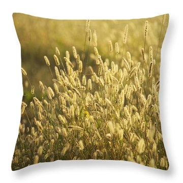 End Of Summer Throw Pillow by Allan Morrison