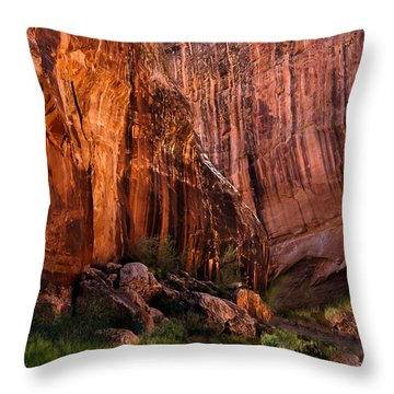 End Of The Boxed Canyon Throw Pillow