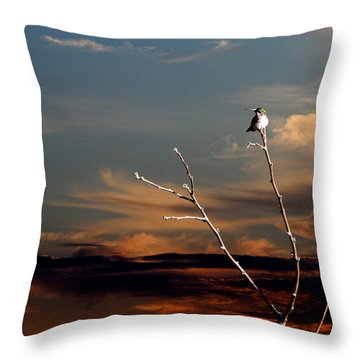 Throw Pillow featuring the photograph End Of The Day by John Freidenberg