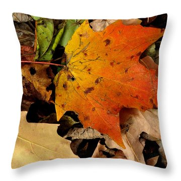 Throw Pillow featuring the photograph End Of The Fall by Dorin Adrian Berbier