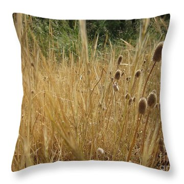 End Of The Spring Throw Pillow