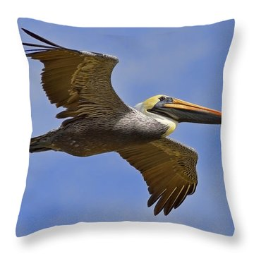 Throw Pillow featuring the photograph Endangered No More by Gary Holmes